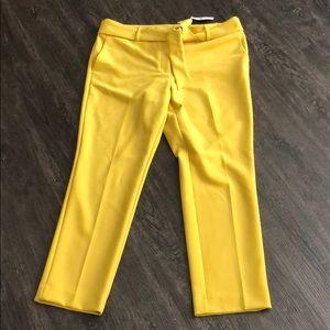 NWT Loft Mustard Yellow tie waist pants